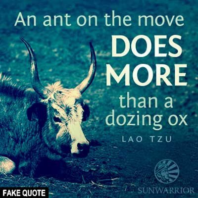 Fake Lao Tzu quote: An ant on the move does more than a dozing ox.